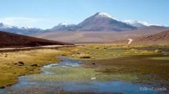 Chile - Atacama - Rio Putana
