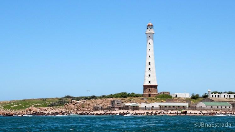 Uruguai - Punta del Este - Isla de Los Lobos