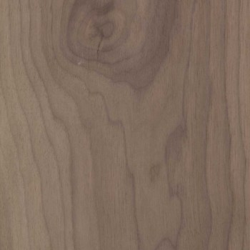 JBR WOOD top noce canaletto