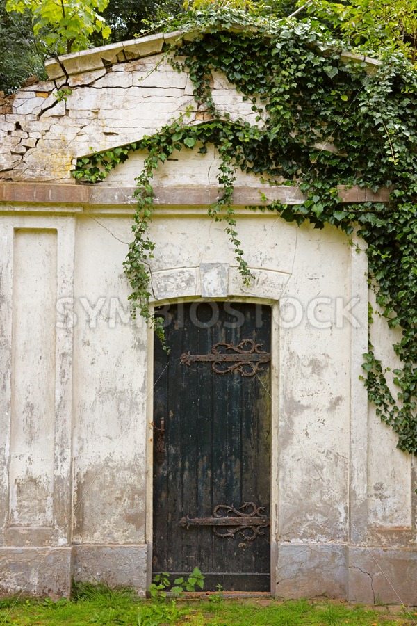 Old ruin covered by plants