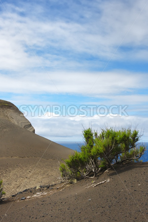 Lava fields - Jan Brons Stock Images