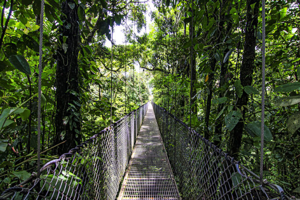 Mistico Hanging Bridges Park