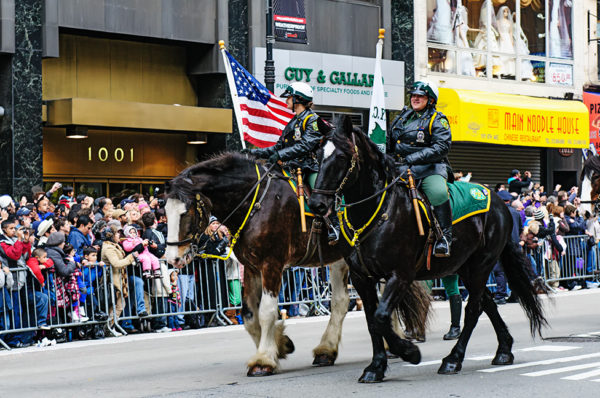Mounted police thanksgiving day parade