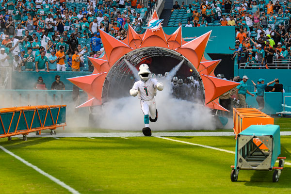 TD the mascot leads the Miami Dolphins onto the field