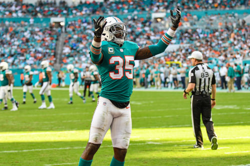 Miami Dolphins defensive back Walt Aikens (35) tries to hype up the crowd