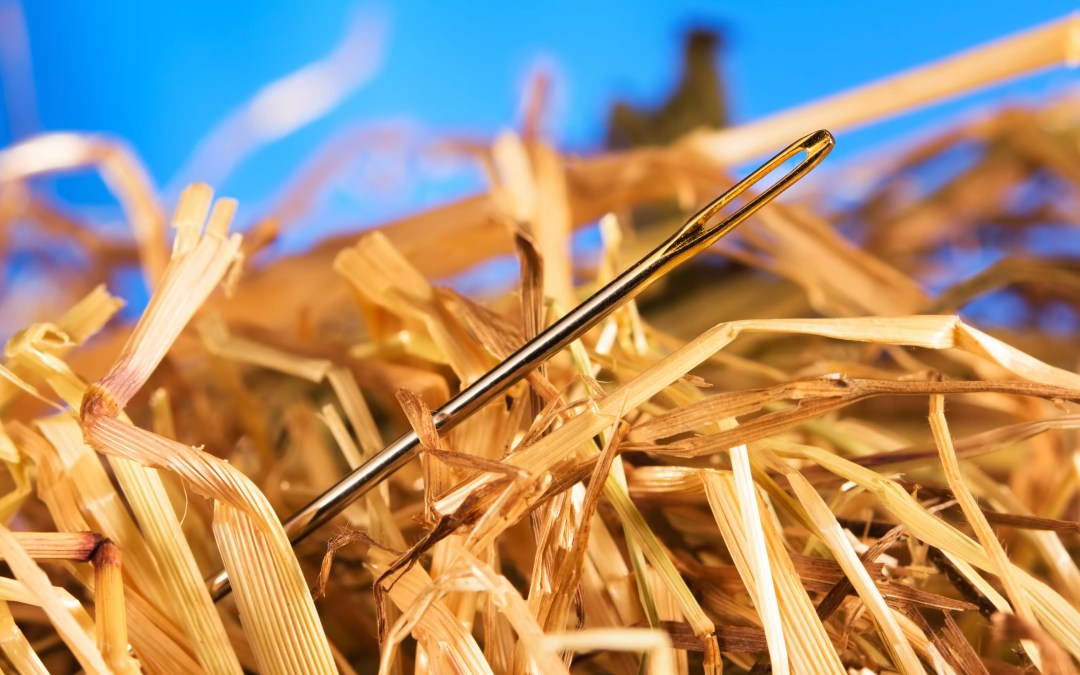 B2B Marketing: When You're the Needle In The Haystack
