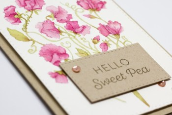 Power Poppy Sweet Pea Show