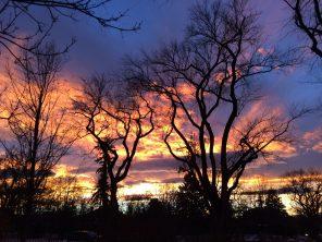 Sunset in the neighborhood.