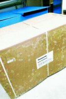 豊洲新市場の店舗内の段ボールに生じたカビ=東京都江東区(市場業者から日本共産党都議団に提供)