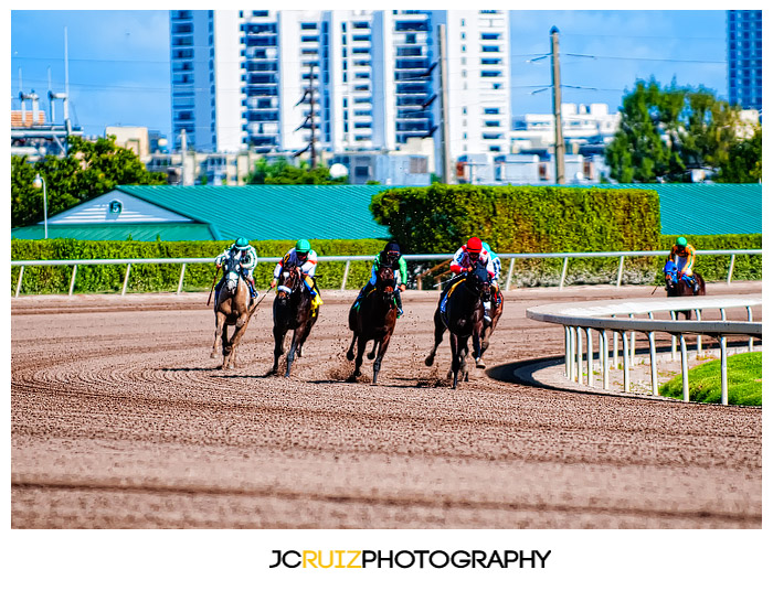 Gulfstream Park Horse Racing