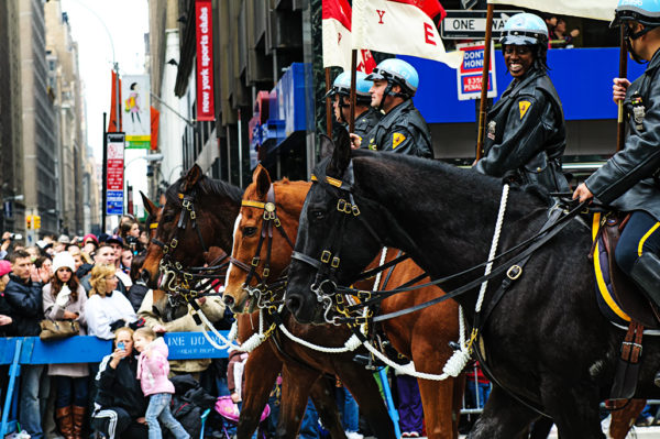 NYC Mounted Police Unit