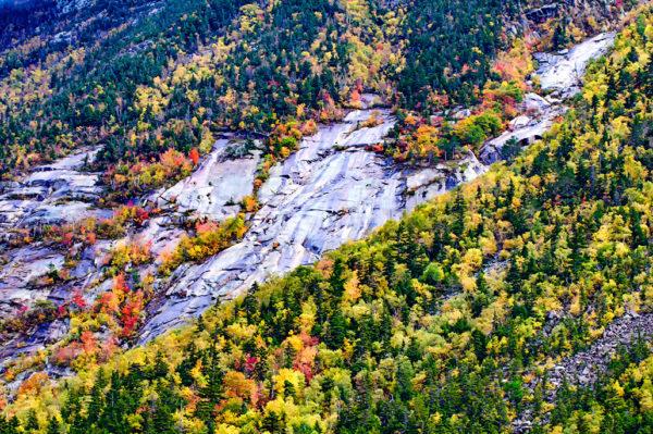 Sugar Hill White Mountains