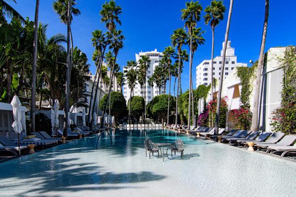 Delano Hotel pool
