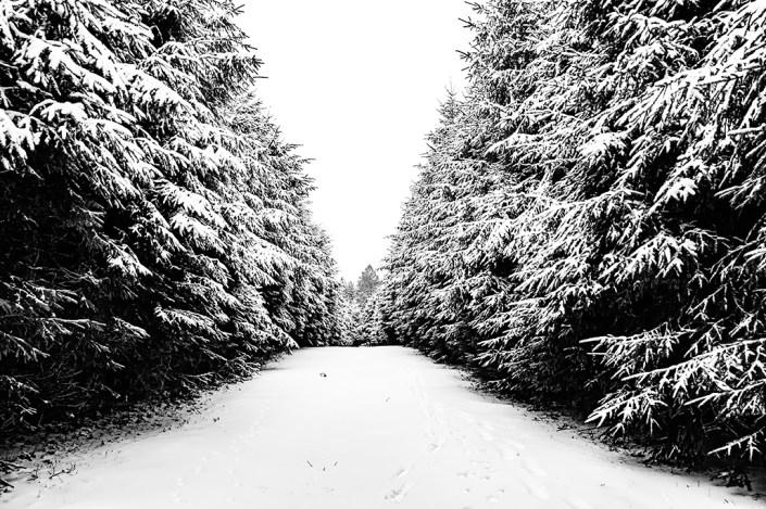 Winter's pathway