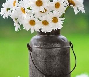 Votre vie est un vase et vous êtes le fleuriste.
