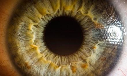 Gros plan extrême sur vos yeux, découvrez la complexité de l'oeil humain