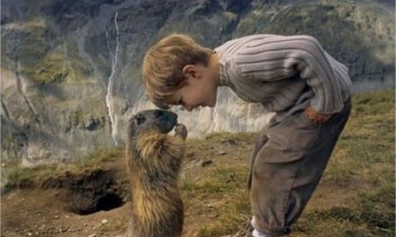 Merveilleuse amitié entre une marmotte et un enfant!