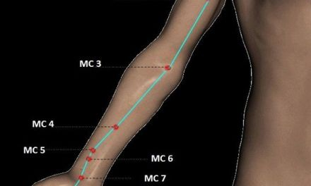 """Point d'acupression: Le point 7 du méridien du cœur """"7C"""" pour calmer l'anxiété, la nervosité, le trac, apaiser les palpitations cardiaques et plus encore !"""