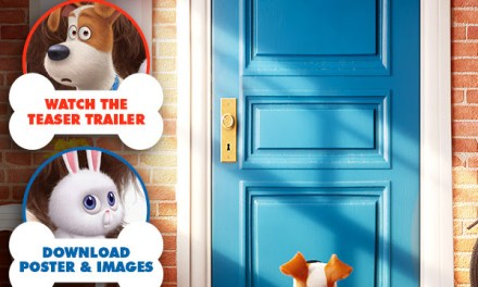 Dessin animé génial – Sortie été 2016 –  The Secret Life Of Pets – Official Teaser Trailer