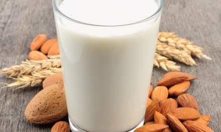 Faire son lait végétal, deux méthodes par Marion Eberschweiler