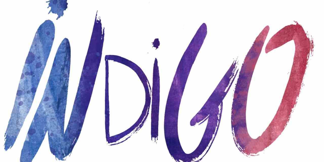 L'interview positive d'Anne Bouquet – Indigo: un réseau social d'entraide sur le point de révolutionner les mentalités