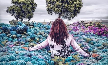 Protégez-vous et nettoyez-vous des ondes négatives au quotidien par Doreen Virtue