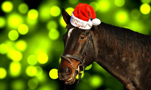 Le Top 25 des phrases que vous allez certainement entendre à Noël…