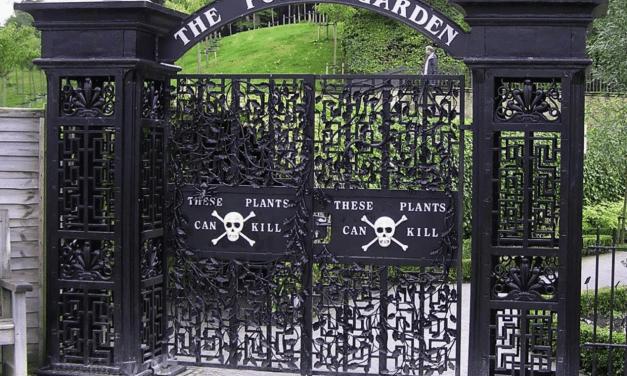 Le «Jardin de Poison» d'Alnwick, royaume des sorcières