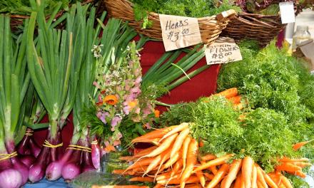 Dix trucs et astuces fastoches pour bien manger sans se ruiner – Kris Carr