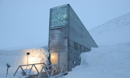 La Norvège veut renforcer la protection de « l'Arche de Noé végétale »