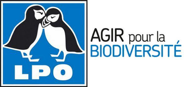 La Ligue de protection des oiseaux (LPO) crée un portail participatif d'observation de la faune et de la flore