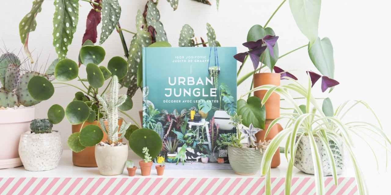 urban jungle d corer avec les plantes journal des bonnes nouvelles. Black Bedroom Furniture Sets. Home Design Ideas