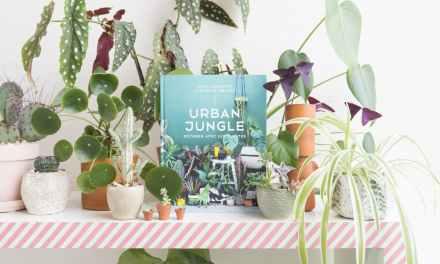 Urban Jungle – Décorer avec les plantes