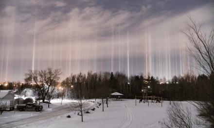 Canada: Elle regarde dehors «juste au cas où»: la magie opère