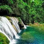 À l'est de la Jamaïque, la cascade de Reach Falls permet de se jeter dans un trou d'eau particulièrement effrayant..