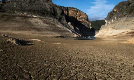 Des solutions « vertes » pour mieux répondre aux besoins en eau