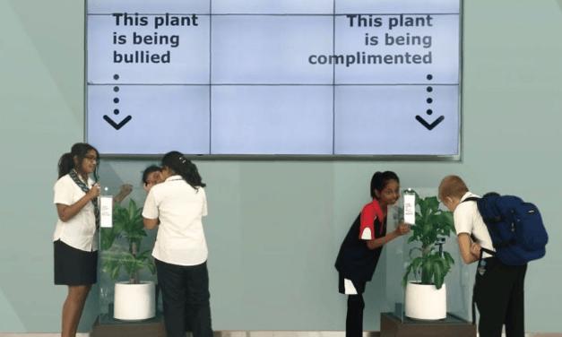Bully une plante: L'incroyable expérience menée par Ikea contre le harcèlement scolaire aux Émirats Arabes Unis