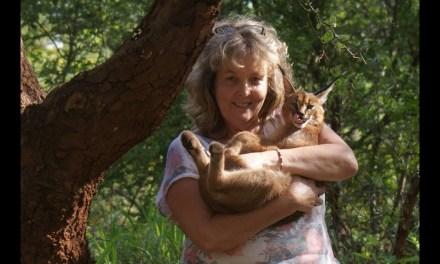 Afrique du Sud : hommage à Louise Joubert, l'ange gardien des animaux sauvages