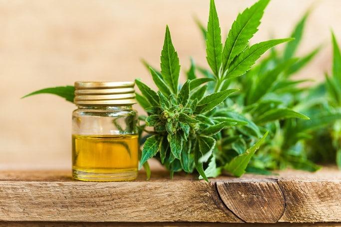Les bienfaits de l'huile de cannabis