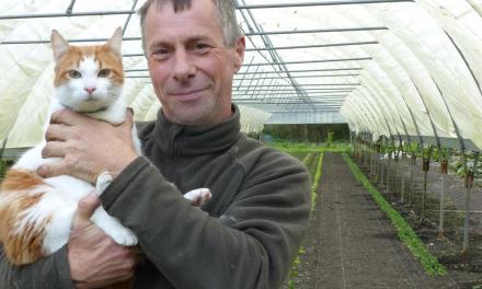Un maraîcher bio sauve des chats d'un refuge et les embauche pour chasser les nuisibles de son jardin. Good job!