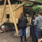 En Gironde, un collège a dit stop au gaspillage alimentaire ! Les poules, le composteur et le potager font désormais partie intégrante de la vie du collège et de ses élèves