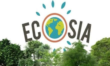 Tu veux avoir un impact positif sur le monde? Commence par planter des arbres avec tes recherches!