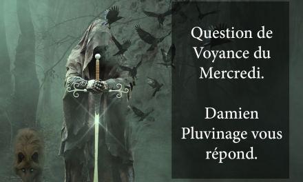 RÉPONSE DE DAMIEN PLUVINAGE À LA QUESTION DE VOYANCE OFFERTE DU 6 FÉVRIER 2019. GAGNANTE: FLORENCE