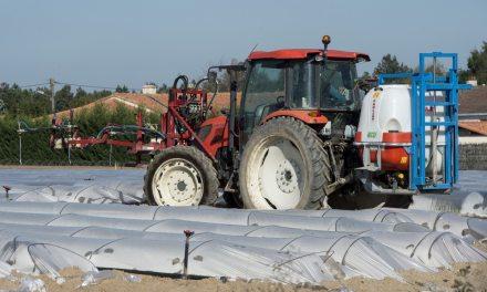 France: Le maire de la petite commune de Langouët interdit les pesticides près des habitations