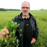 L'agriculture « sans-labour », une méthode qui gagne du terrain