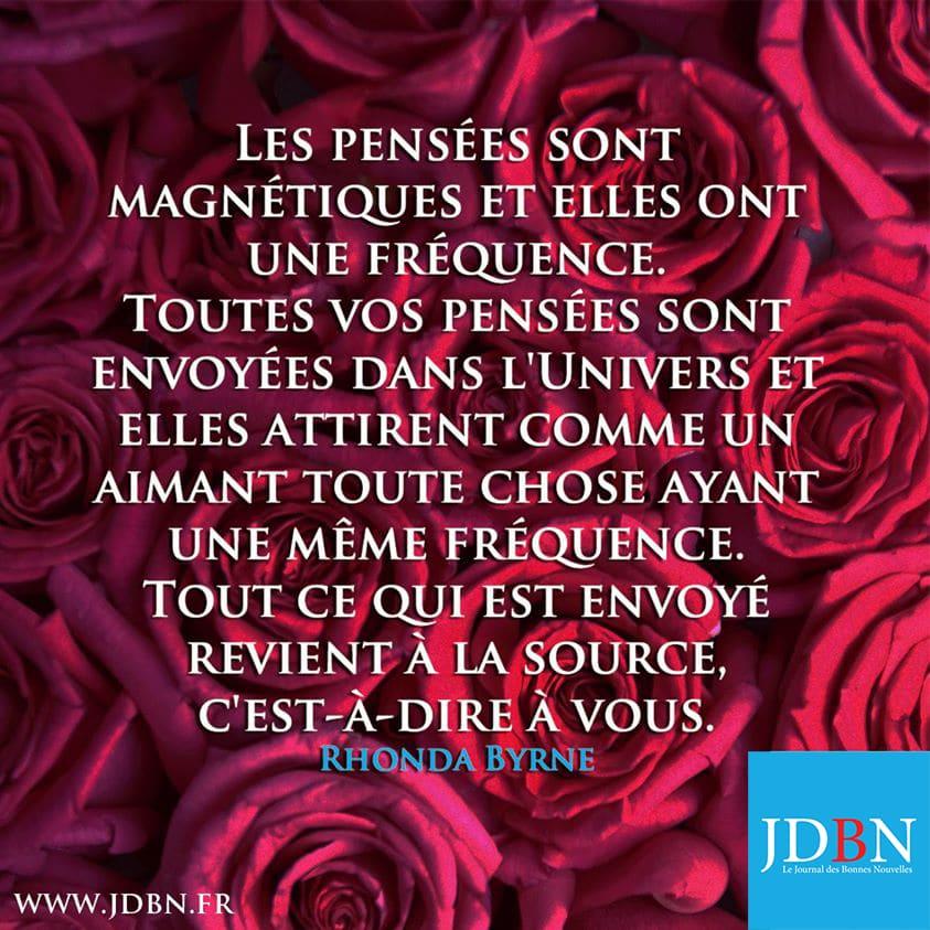 Bon Lundi 11 Janvier A Toutes Et A Tous De La Part Du Jdbn Journal Des Bonnes Nouvelles