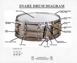 JD Drum School's Drummer Archives  Snare Drum Diagram