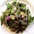 Arugula & Avocado Salad (AIP, Paleo, Plant-Based)
