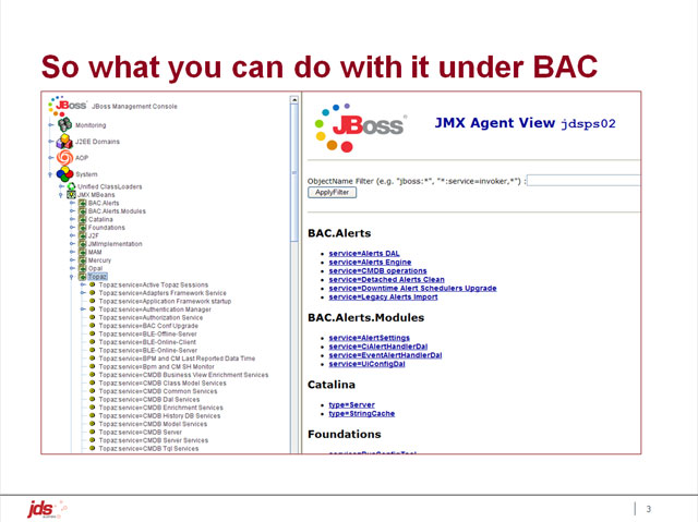 So, what can you do with the JMX Console under BAC?
