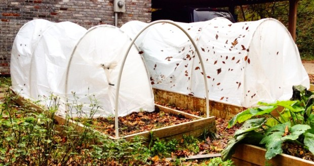 hoop houses, gardening, grow your own, sustainability